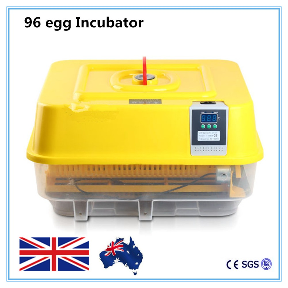 Digital Brooder Cheap Fully Automatic Chicken Duck Egg Incubator cheap price china automatic digital temperature small brooder chicken duck egg incubator controller 12 egg incubator for sale