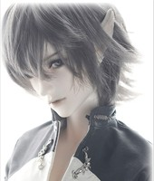 luodoll Wolf Knight Wolf The Knight 1/3 BJD doll shipping (free eyes + free make up)