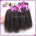 6a Kinky curly virgin hair weave  4bundles/lot malaysian afro kinky curly hair extensions black color soft tight curly on sale