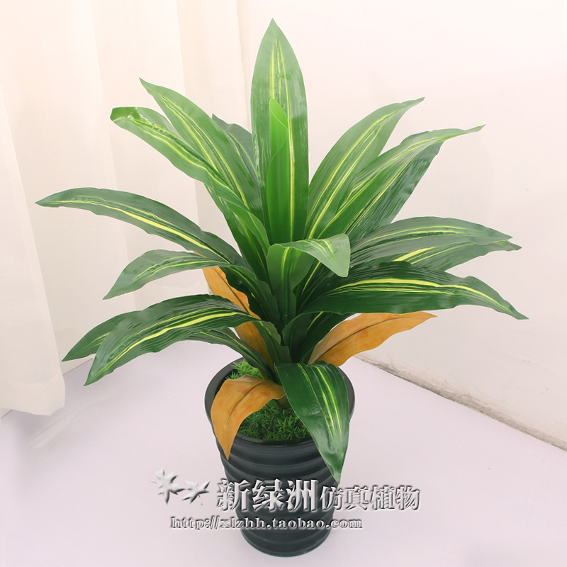 Small Potted Bonsai Plant Simulation Fake Tree Feng Shui Decorated Living Room TV While Single