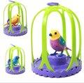 Электрический голосовой Птица Домашних Животных Музыка Пение Птиц Детские Игрушки с птичьей клетки Рождественский Подарок Для Детей