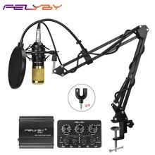 FELYBY bm 800 profesyonel kondenser mikrofon bilgisayar Karaoke Video stüdyo kayıt mikrofon filtresi Phantom güç ses kartı