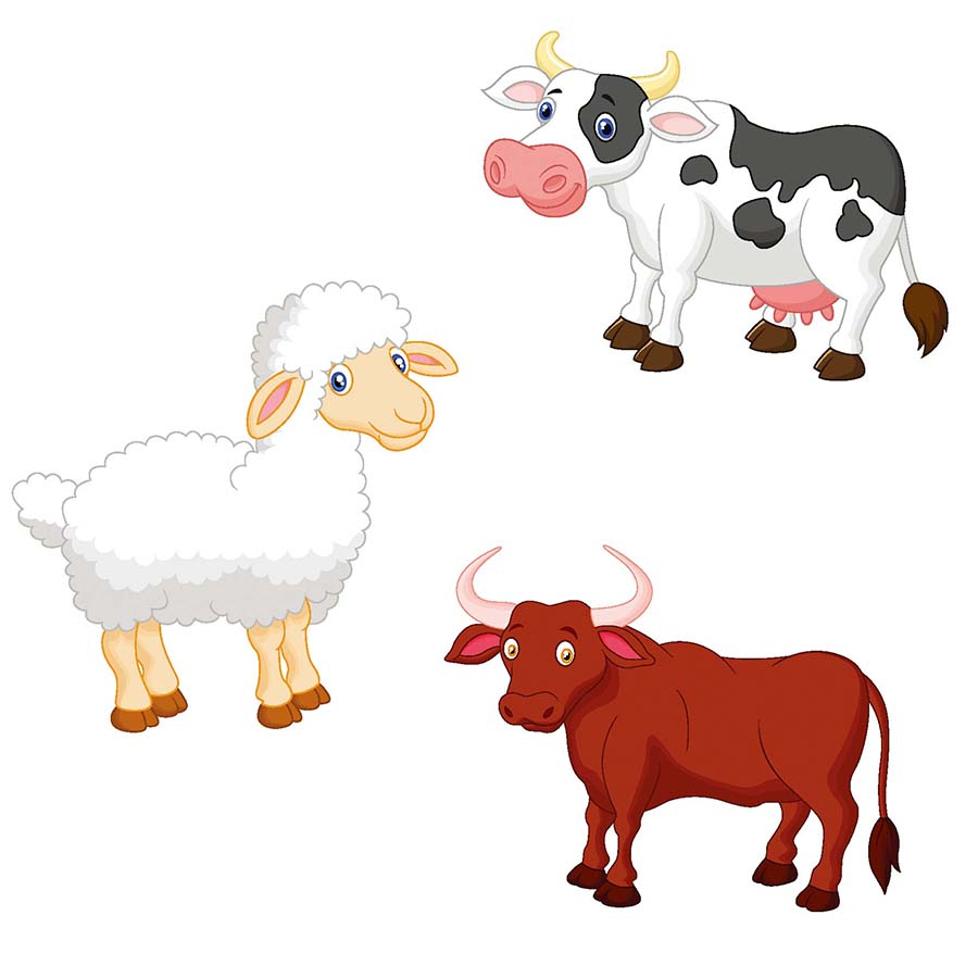 Kids Room Wall Decals Farm Wall Decals Farm Animal Decals: Cartoon Farm Animal Sheep Cows Wall Sticker For Kids Room