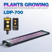 LICAH สดน้ำพิพิธภัณฑ์สัตว์น้ำ LED LIGHT LDP 700