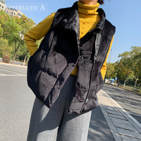 Women Winter Velvet Vest 2019 NEW Korean Zipper Cotton Padded Sleeveless Down Jacket Velvet Warm Vest Jacket Female Waistcoats