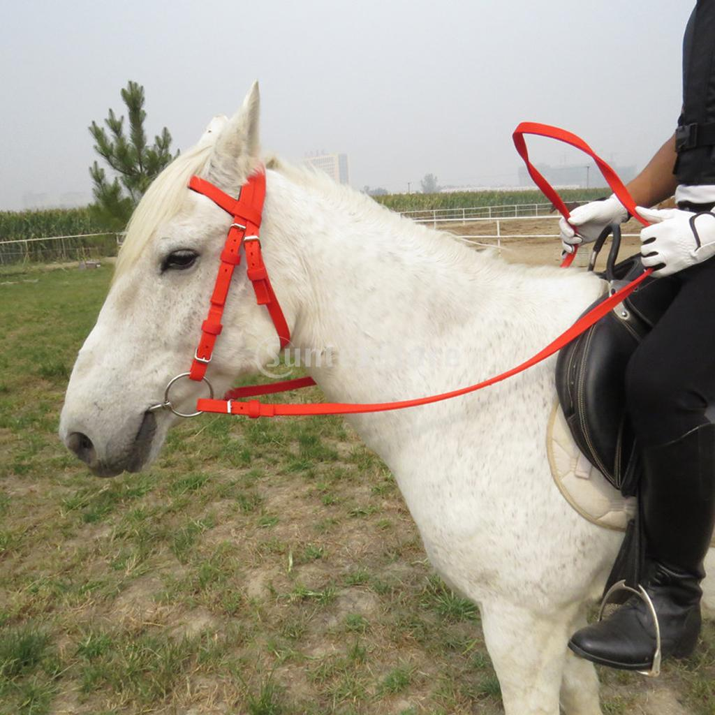 Equestrian Sports Horse Riding Bridle + Reins & Snaffle Bit Set Fits 1.4m and more than 1.4m Height Horse