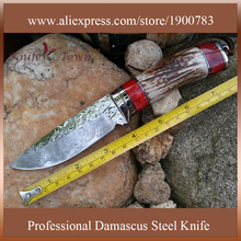 DT076 2016 fixed damascus steel Blade hunting knives Camping Survival Knife Outdoor knifes hunting military army Free shipping