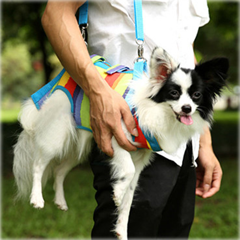 Multi Function Pet Dog Carrier Bag dog with Leash Rope