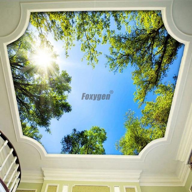 Digital Gedruckte und uv druck wohnzimmer decke zwischendecke Blauen ...