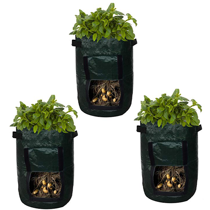 Us 12 63 32 Off 3 Pack Potato Growing Bag Planter Pe Cloth Planting Grow Container Vegetable Gardening Thicken Durable Garden Pot Jardineria In