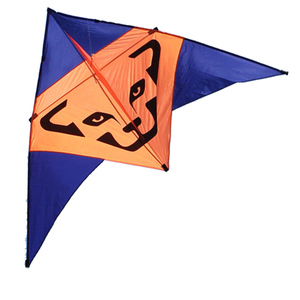 NEW High Quality Outdoor Fun Sports 2.7m Power The Cheetah Triangle Kite With Handle And Line Good Flying