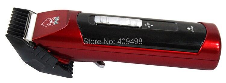 CP-500 (31)