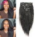 Clip In Human Hair Extensions Brazilian Virgin Human Hair Kinky Straight African American Clip in Hair Extension Natural Clip IN
