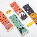 Aquecedores do Pé do bebê Segurança Da Criança Infantil Rastejando Crianças Knee Pads Protector Bonito Impresso Animal Sets Joelheira