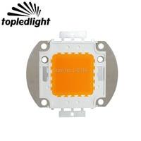 Free Shipping High Power 100W Warm White LED Emitter Light 1900K 2100K 30 36V 3A
