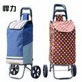 Hanli duas rodas dobrável carrinho de compras portátil carrinho de bagagem carrinho de reboque do carro para casa