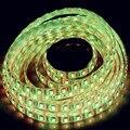 16.4ft 5M 5050 Flexible LED Strip Interior Camper Trailers Light 12V DC 300leds RGB/white/blue/warm white/green