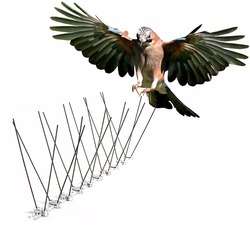 Stainless Steel Bird Repellent Spikes -Cover 50cm*4
