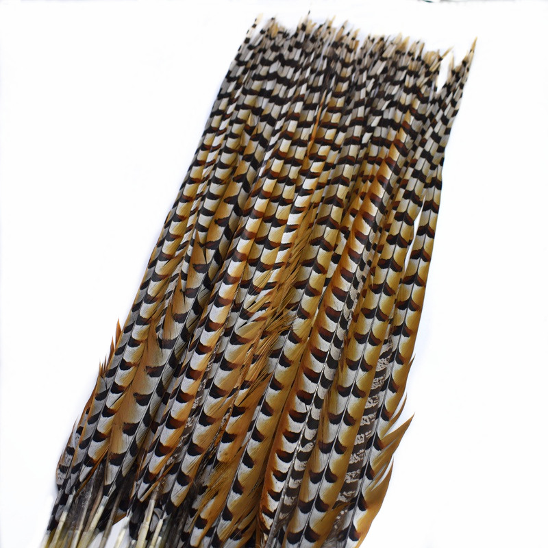 Top 10pcs 30 180cm Natural reeves Pheasant Tail Feathers crafts DIY Wedding feathers Party Halloween Pheasant plumas Decoration in Feather from Home Garden