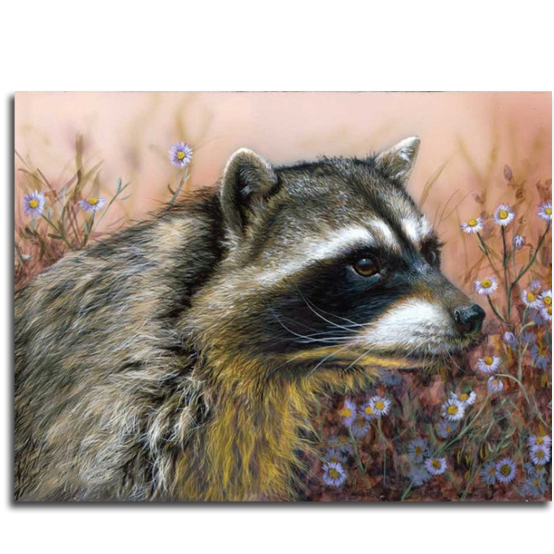 Online Buy Wholesale raccoon pictures from China raccoon ... Raccoon Painting