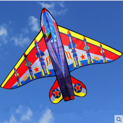 New Arrive Outdoor Fun Sports 63inch Plane Kite /Kites With Handle And Line For Kids Gifts Good Flying image
