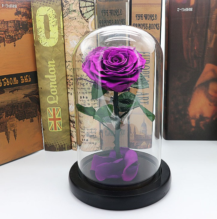 Beauty and Beast Red Roses In A Glass Dome on A Wooden Base for Valentine's Day Wedding Wedding Holding Eternal Flowers