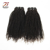 2 Bundles Afro Kinky Curly Hair Weft Brazilian Non Remy Hair Weave Bundles Natural Color Human Hair Extension Bobbi Collection