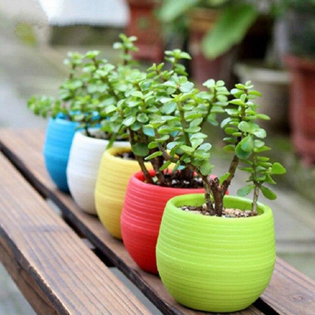 5pcs Lot Flower Pot Plate Flowers Garden Supplies Decoration Products Flowerpot Nursery Pots Gardening Bowl
