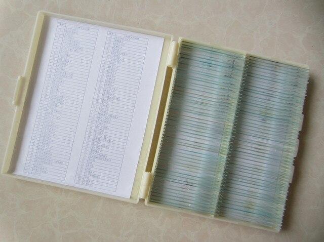 100 sztuk w kartonie roślin biologicznej mikroskopu laboratoryjnego