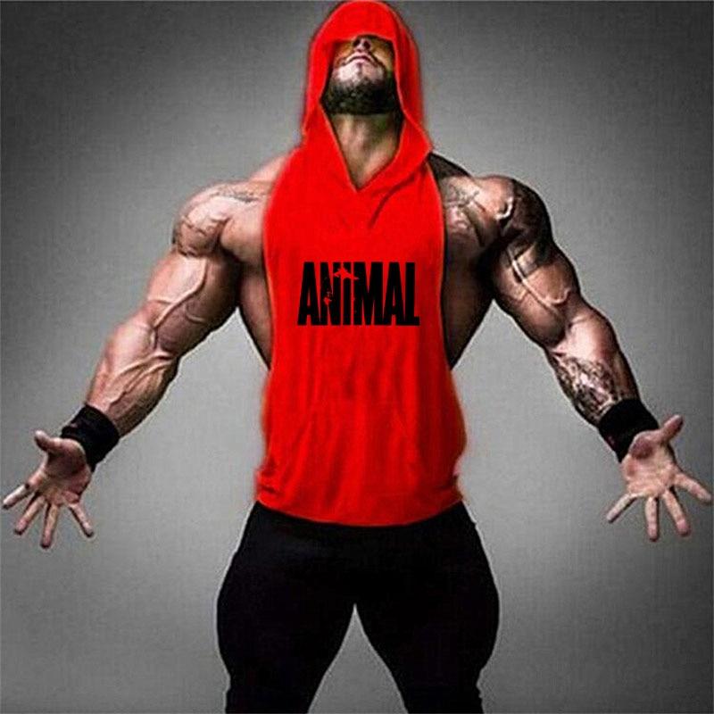 Animal red