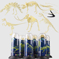 6 шт./компл. DIY Сборка Пластиковых Динозавров Скелет Игрушки Дино Цифры Коллекционная Модель Игрушки Скелет Динозавра Игрушка для Детей КОРОБКИ