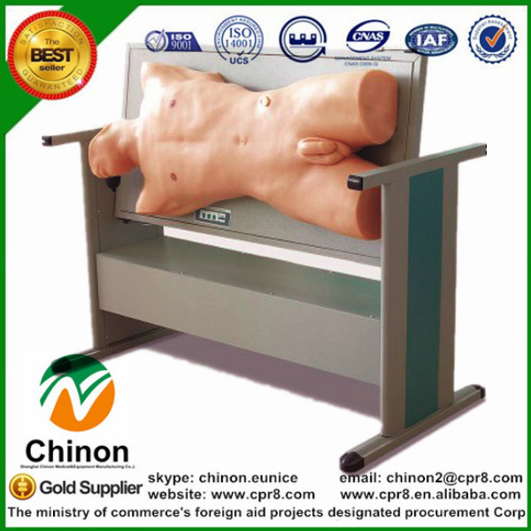 BIX-CK810 Medical Science Examination Skills Training Model Comprehensive Centesis Percussion Check Manikin  MQ137 bix lv10 medical education training