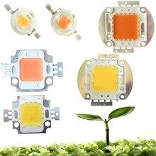 High Power 45mil 3w 10W 20W 30W 50W 100W Full Spectrum 400~840nm White 380-780nm LED Grow Light Diodes Bulb Part