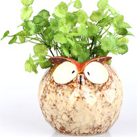 Owl Shape Ceramic Pottery Water Seeds Flower Pot Succulents Planter Minature Crafts Microscape
