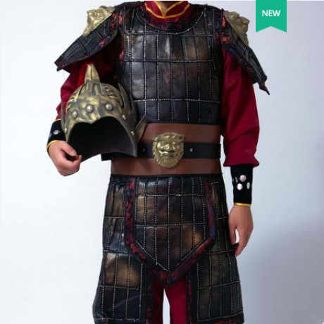 835f4a83b ... high quality chinese soldier costume ancient chinese armor costume for  men historical costume ancient dynasty cosplay