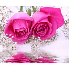 3D DIY Pink Paint  Diamond Couture Beautiful Flowers Embroidery Double Room Decorate Rhine Stone Mosaic Photo