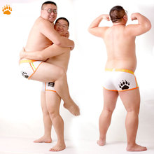 2016 New Arrival Bear Claw Men's Plus Size Boxers Bear Paw Underwear Sexy Shorts Designed For Gay Bear Free Shipping! M L XL XXL