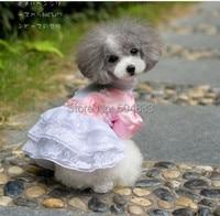 Abby Luxury Pet Dog Wedding Dress Puppy Doggie Princess Lace Party Skirt Size XS To XL