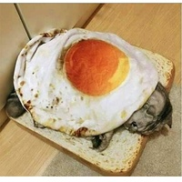 Съели бы такой бутерброд) #2