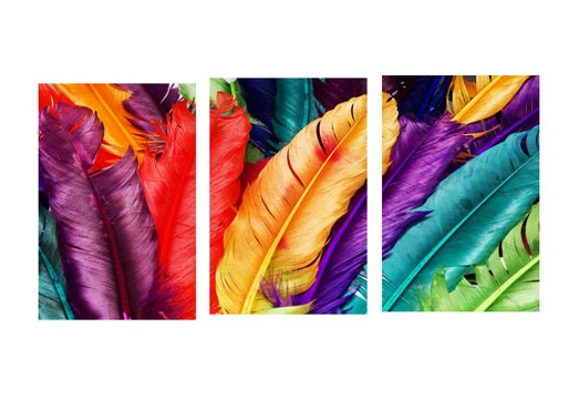 aliexpress : buy 3 piece modern canvas paintings colorful
