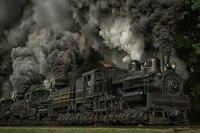 غرفة المعيشة الجدار الديكور المنزل قماش المشارك قطار البخار قاطرة الغبار سكك عجلات ماريلاند usa طبيعة الأشجار العشب دخان