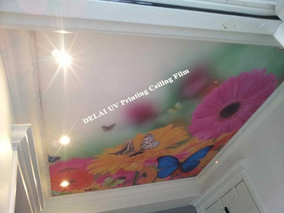 חדש הגעה ענק חמניות UV הדפסה למתוח תקרת סרט עם פרפר pvc תקרת סרט
