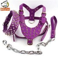 Viola Spiked Studded Heavy Duty Leather Collare di Cane Harness Guinzaglio Set Per Meduim Cani di Grossa taglia