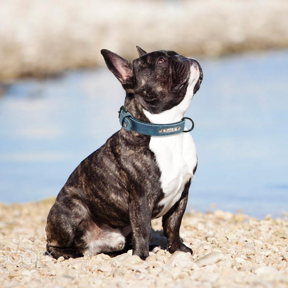 collier cuir pour chien personnalisé tel + nom