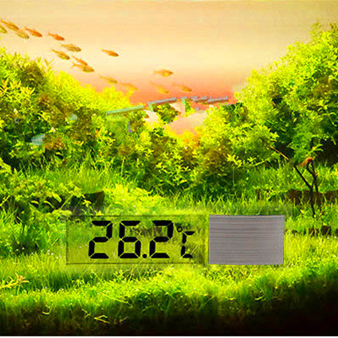 LCD 3D Crystal Digital Electronic Temperature Measurement Fish Tank Aquarium Thermometer Temperature Control Accessories