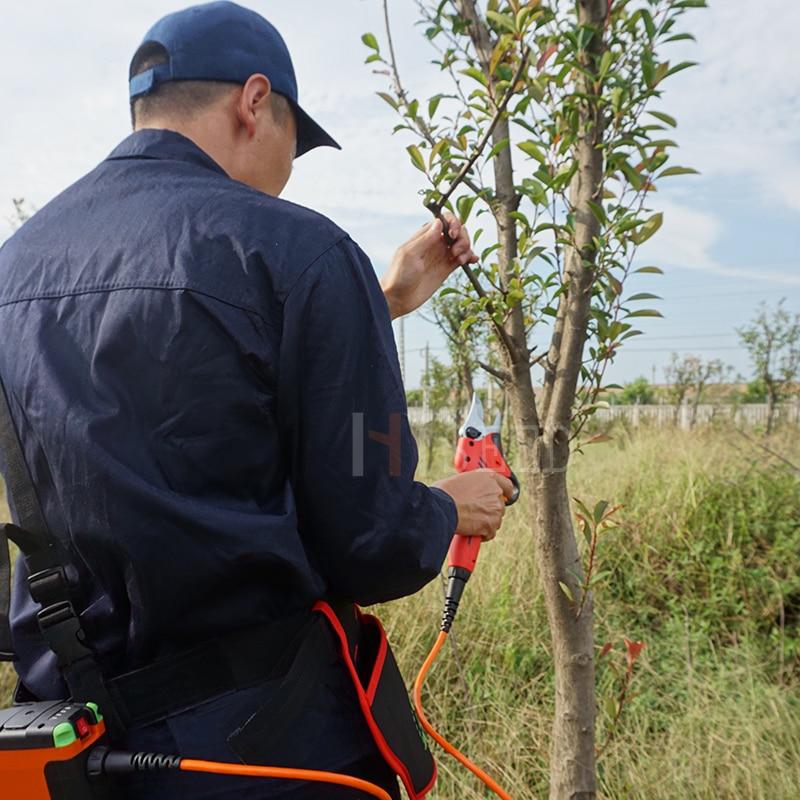 Foarfece de arbore fruct cu baterii de litiu cele mai bune - Unelte de gradina - Fotografie 2