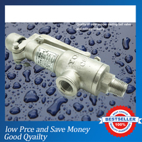 A21W 16P Series DN20 Industry Gas Safety Valve
