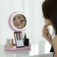 LED Light Cosmetic Mirror Vanity Compact Makeup Touched Adjustable Rotatable ABS Brightness Home Bedside Bedroom Pink Blue White