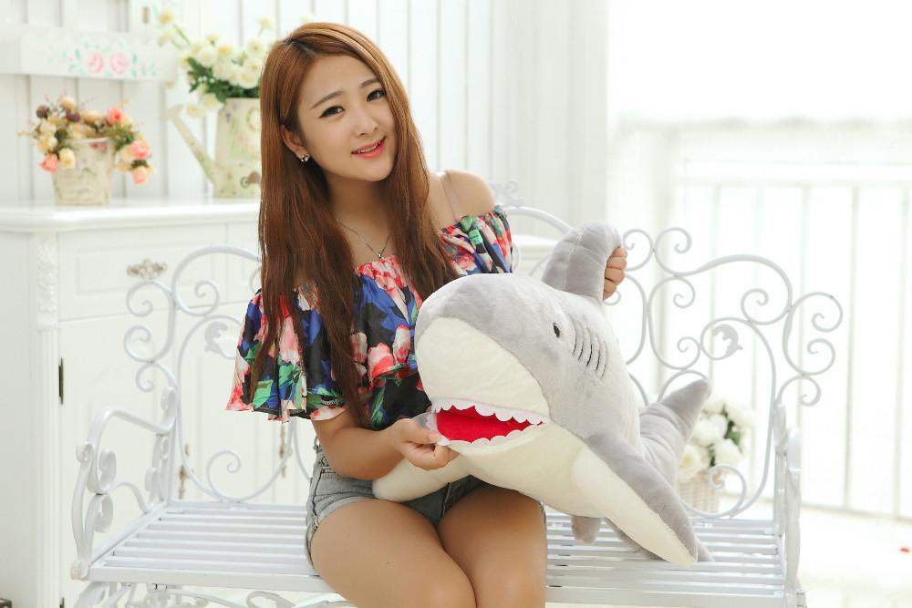 Shark (3)