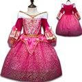 Rainha da neve Elsa Princesa Vestidos para Meninas Bela Adormecida Aurora Vestido Roupas Vestido Crianças Meninas Cinderela Rapunzel Sofia